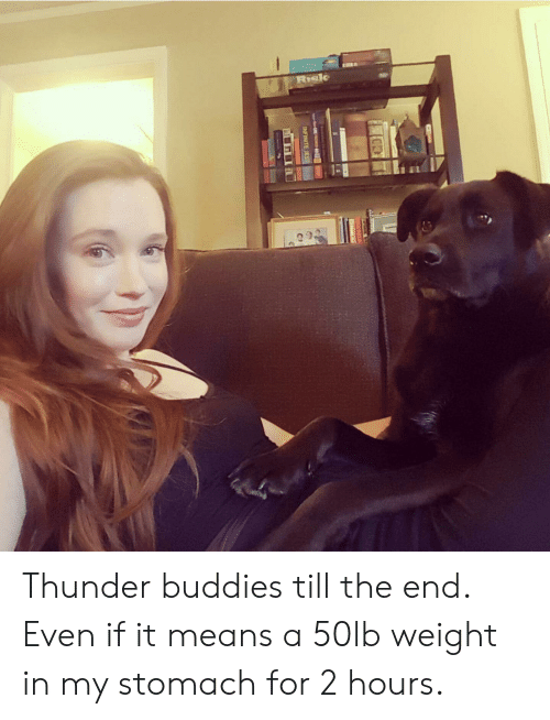 Thunder, Means, and Stomach: RIsk  INEINITE JEST  C1 Thunder buddies till the end. Even if it means a 50lb weight in my stomach for 2 hours.