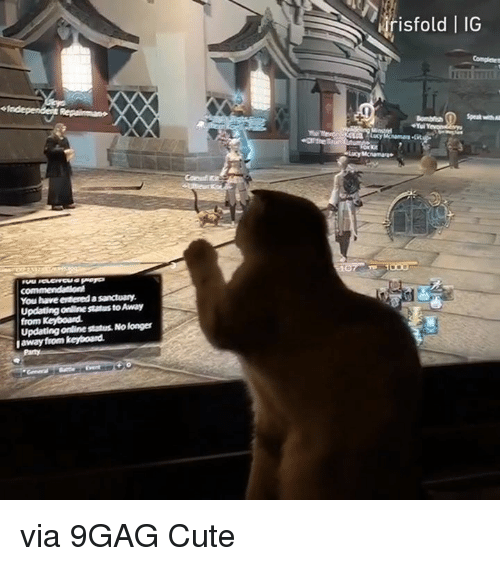 9gag, Cute, and Dank: risto  ld | IG  You have evtered a sanctuary  Updating online status to Away  from Keyboard  Updating online status. No longer  away from keyboand via 9GAG Cute
