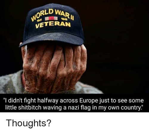 "Nazy: RLD WAR  VETERAN  1945  ""I didn't fight halfway across Europe just to see some  little shitbitch waving a nazi flag in my own country."" Thoughts?"