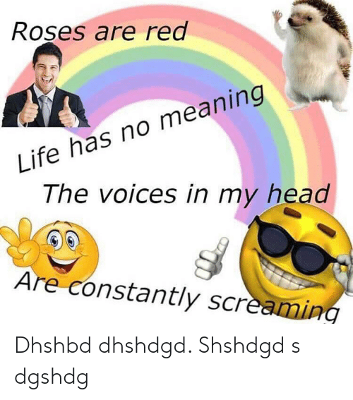 Head, Life, and Meaning: Roşes are red  Life has no meaning  The voices in my head  Are constantly screaming Dhshbd dhshdgd. Shshdgd s dgshdg