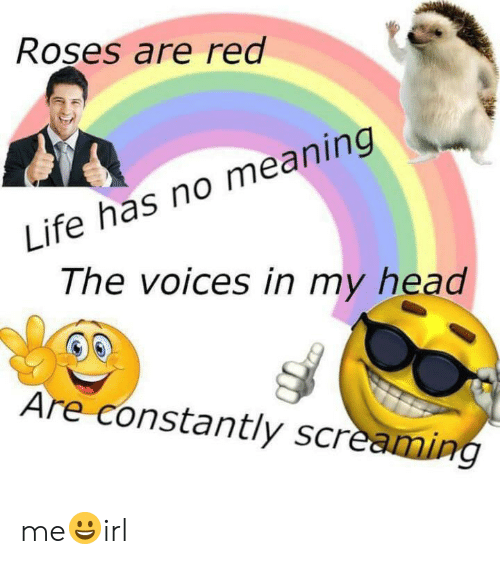 Head, Life, and Meaning: Roşes are red  Life has no meaning  The voices in my head  Are constantly screaming me😀irl