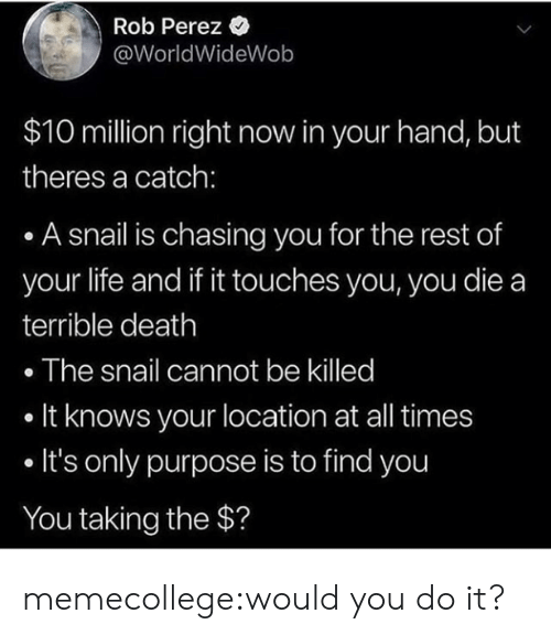 Killed It: Rob Perez *  @WorldWideWob  $10 million right now in your hand, but  theres a catch:  A snail is chasing you for the rest of  your life and if it touches you, you die a  terrible death  . The snail cannot be killed  . It knows your location at all times  . It's only purpose is to find you  You taking the $? memecollege:would you do it?