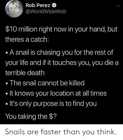 Killed It: Rob Perez  @WorldWideWob  $10 million right now in your hand, but  theres a catch:  . A snail is chasing you for the rest of  your life and if it touches you, you die a  terrible death  . The snail cannot be killed  . It knows your location at all times  . It's only purpose is to find you  You taking the $? Snails are faster than you think.