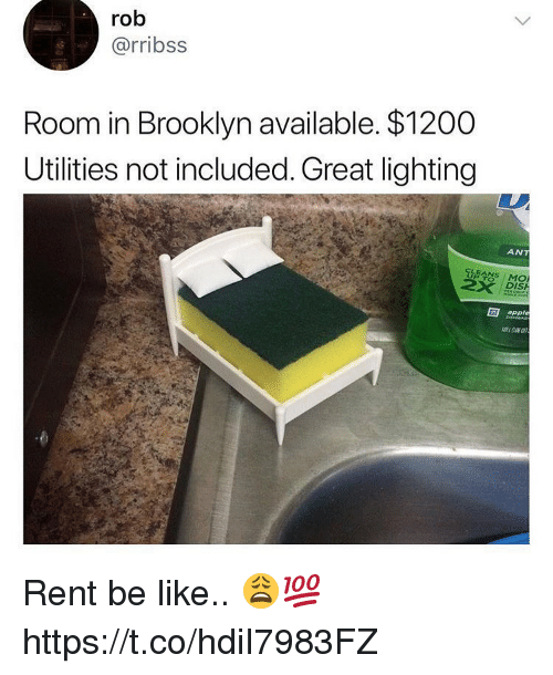 Apple, Be Like, and Memes: rob  @rribss  Room in Brooklyn available. $1200  Utilities not included. Great lighting  ANT  LEANS MO  DIS  apple Rent be like.. 😩💯 https://t.co/hdiI7983FZ