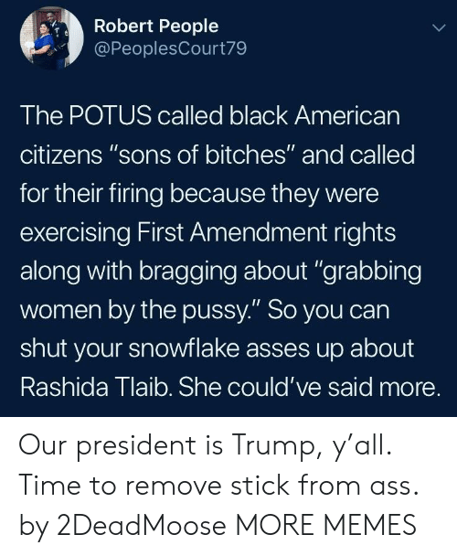 "Ass, Dank, and Memes: Robert People  @PeoplesCourt79  The POTUS called black Americarn  citizens ""sons of bitches"" and called  for their firing because they were  exercising First Amendment rights  along with bragging about ""grabbing  women by the pussy."" So you can  shut your snowflake asses up about  Rashida Tlaib. She could've said more. Our president is Trump, y'all. Time to remove stick from ass. by 2DeadMoose MORE MEMES"