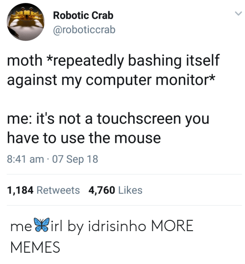 Dank, Memes, and Target: Robotic Crab  @roboticcrab  moth *repeatedly bashing itself  against my computer monitor*  me: it's not a touchscreen you  have to use the mouse  8:41 am 07 Sep 18  1,184 Retweets 4,760 Likes me🦋irl by idrisinho MORE MEMES