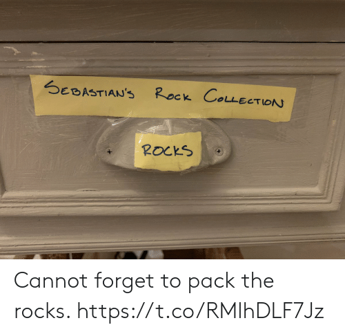 Memes, 🤖, and Rock: Rock COLLECTION  SEBASTIAN'S  ROCKS Cannot forget to pack the rocks. https://t.co/RMlhDLF7Jz