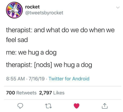 Nods: rocket  @tweetsbyrocket  therapist: and what do we do when we  feel sad  me: we hug a dog  therapist: [nods] we hug a dog  8:55 AM 7/16/19. Twitter for Android  700 Retweets 2,797 Likes