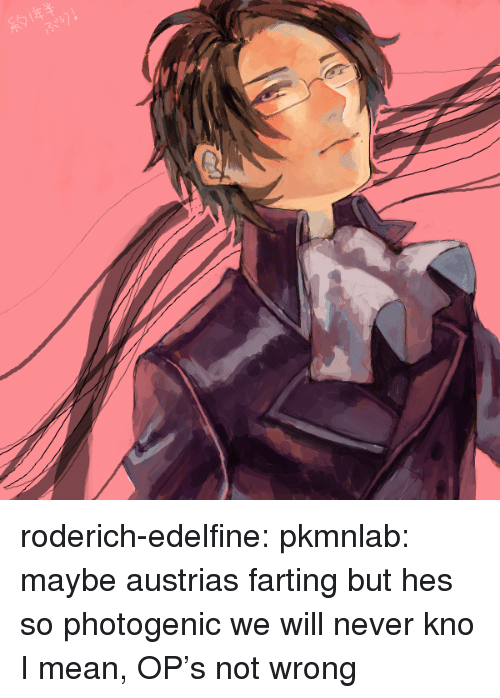 farting: roderich-edelfine:  pkmnlab: maybe austrias farting but hes so photogenic we will never kno  I mean, OP's not wrong
