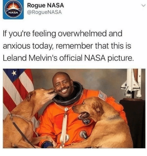 Nasa, Rogue, and Today: Rogue NASA  @RogueNASA  NASA  If you're feeling overwhelmed and  anxious today, remember that this is  Leland Melvin's official NASA picture.