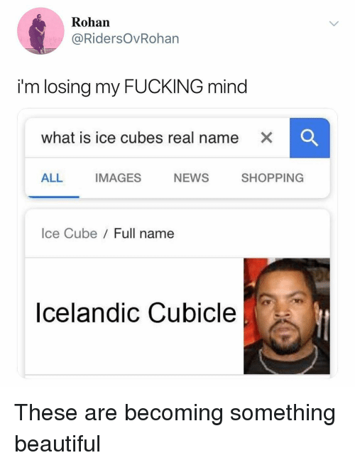 Beautiful, Fucking, and Ice Cube: Rohan  @RidersOvRohan  i'm losing my FUCKING mind  what is ice cubes real name  x  ALL IMAGES NEWS SHOPPING  Ice Cube Full name  Icelandic Cubicle These are becoming something beautiful