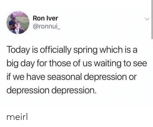 Depression, Spring, and Today: Ron Iver  @ronnui  Today is officially spring which is a  big day for those of us waiting to see  if we have seasonal depression or  depression depression. meirl