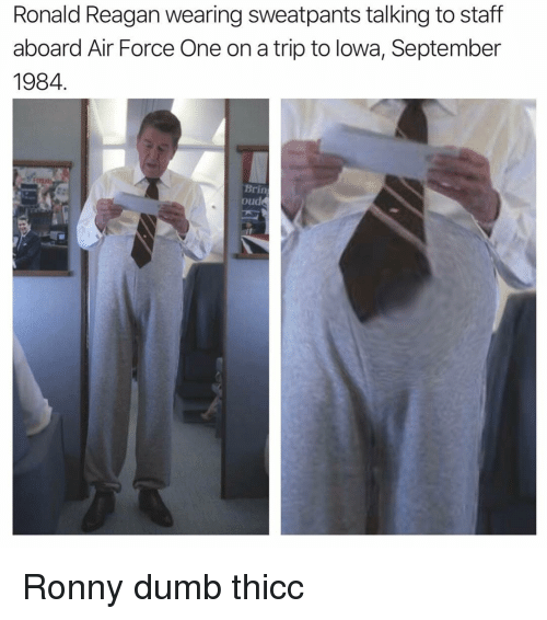 Dumb, Air Force, and Dank Memes: Ronald Reagan wearing sweatpants talking to staff  aboard Air Force One on a trip to lowa, September  1984  Brin  oude Ronny dumb thicc