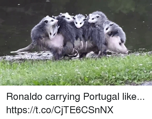 Soccer, Portugal, and Ronaldo: Ronaldo carrying Portugal like... https://t.co/CjTE6CSnNX