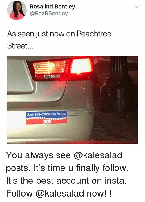 Memes, Bentley, and Best: Rosalind Bentley  @RoZRBentley  As seen just now on Peachtree  Street...  ANY FUNCTIONING ADULT  2020 You always see @kalesalad posts. It's time u finally follow. It's the best account on insta. Follow @kalesalad now!!!