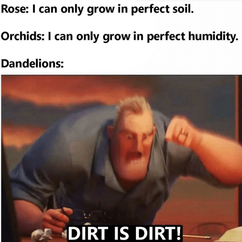i can: Rose: I can only grow in perfect soil.  Orchids: I can only grow in perfect humidity.  Dandelions:  DIRT IS DIRT!