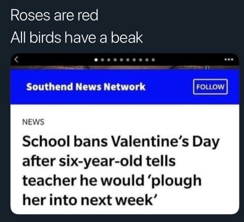 Valentine's Day: Roses are red  All birds have a beak  Southend News Network  FOLLOW  NEWS  School bans Valentine's Day  after six-year-old tells  teacher he would 'plough  her into next week'