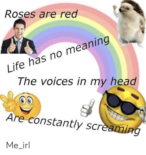 Head, Life, and Meaning: Roses are red  Life has no meaning  The voices in my head  Are constantly screaming Me_irl