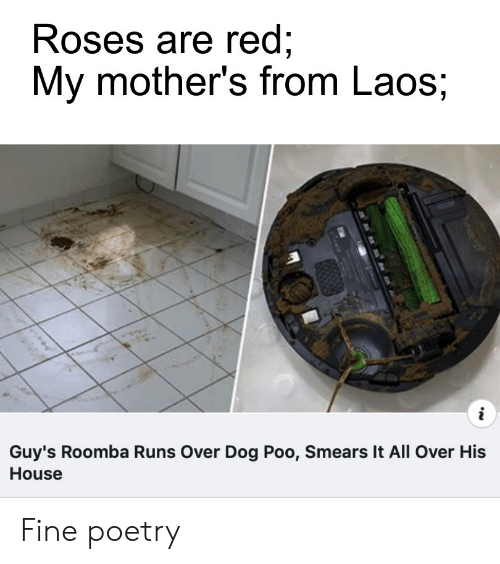 Reddit, Roomba, and House: Roses are red;  My mother's from Laos;  i  Guy's Roomba Runs Over Dog Poo, Smears It All Over His  House Fine poetry