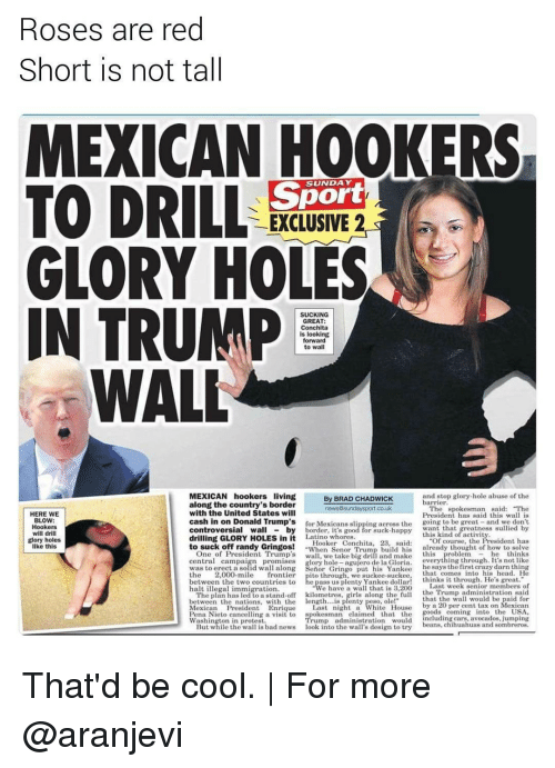 """chadwicks: Roses are red  Short is not tall  MEXICAN HOOKERS  TO DRILL  Sport  EXCLUSIVE 2  GLORY HOLES  IN TRUMP  SUCKING  GREAT:  Conchita  is looking  forward  to wal  WALL  MEXICAN hookers living  and stop glory hole abuse of the  By BRAD CHADWICK  barrier.  along the country's border  The spokesman said: """"The  news Sunday sport co.uk  with the United States will  HERE WE  President has said this wall is  BLOW:  cash in on Donald Trump's  for Mexicans ng across the  going to be great  and we don't  Hookers  Wall  controversial by  will drill  drilling GLORY HOLES in it  Latino whores  Of course, the  glory holes  Hooker Conchita, 28, said  to suck off randy Gringos!  When Senior Trum  build his  already thought of how to solve  One of President Trump's  like this  central campa  glory hole  agujero de la Gloria  he says the first crazy darn thing  along Senior Gringo put his Yankee  the  2,000-mile  frontier  pito through, we suckee suckee, that comes into his head. He  thinks it through. He's great.  between the two countries to  Last week senior members of  halt illegal immigration.  We have a wall that is 3,200  the Trump administration said  The plan has led to a stand-off kilometres  that the wall wou  with the length  between the nations  by a 20 per cent tax on Mexican  Mexican President Enrique  Last night a White  House  oods coming  nto the USA  ng a visit to  spokesman claimed that the  Pena Nieto cance  uding cars, avocados, jumping  Washington in protest.  beans, chihuahuas and sombreros  But while the wa  s bad news  ook into the wa  s design to try That'd be cool.   For more @aranjevi"""