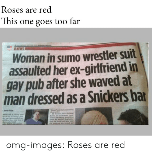 Omg, Tumblr, and Blog: Roses are red  This one goes too far  NEW  Woman in sumo wrestler suit  assaulted her ex-girlfriend in  gay pub after she waved at  man dressed as a Snickers ba omg-images:  Roses are red