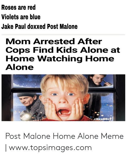 Topsimages: Roses are red  Violets are blue  Jake Paul doxxed Post Malone  Mom Arrested After  Cops Find Kids Alone at  Home Watching Home  Alone  rlEksdiBoy Post Malone Home Alone Meme | www.topsimages.com