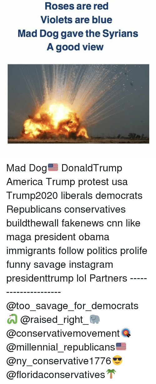America, cnn.com, and Funny: Roses are red  Violets are blue  Mad Dog gave the Syrians  A good view Mad Dog🇺🇸 DonaldTrump America Trump protest usa Trump2020 liberals democrats Republicans conservatives buildthewall fakenews cnn like maga president obama immigrants follow politics prolife funny savage instagram presidenttrump lol Partners --------------------- @too_savage_for_democrats🐍 @raised_right_🐘 @conservativemovement🎯 @millennial_republicans🇺🇸 @ny_conservative1776😎 @floridaconservatives🌴