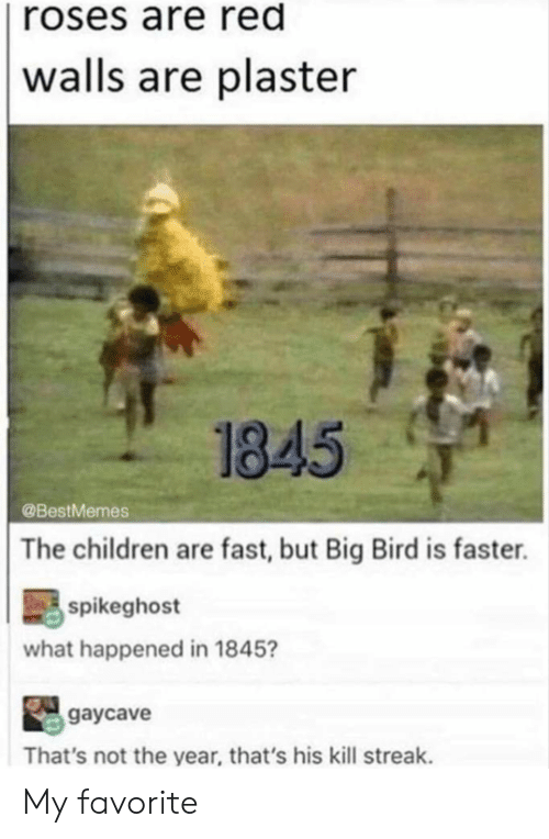 Children, Big Bird, and Red: roses are red  walls are plaster  1845  @BestMemes  The children are fast, but Big Bird is faster.  spikeghost  what happened in 1845?  gaycave  That's not the year, that's his kill streak. My favorite