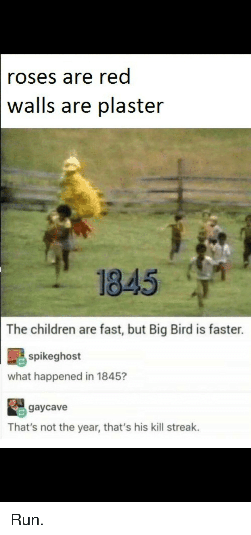 Big Bird: roses are red  walls  are plaster  1845  The children are fast, but Big Bird is faster.  spikeghost  what happened in 1845?  gaycave  That's not the year, that's his kill streak. Run.