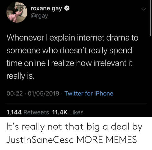 Dank, Internet, and Iphone: roxane gay *  @rgay  Whenever lexplain internet drama to  someone who doesn't really spend  time online I realize how irrelevant it  really is.  00:22 01/05/2019 Twitter for iPhone  1,144 Retweets 11.4K Likes It's really not that big a deal by JustinSaneCesc MORE MEMES