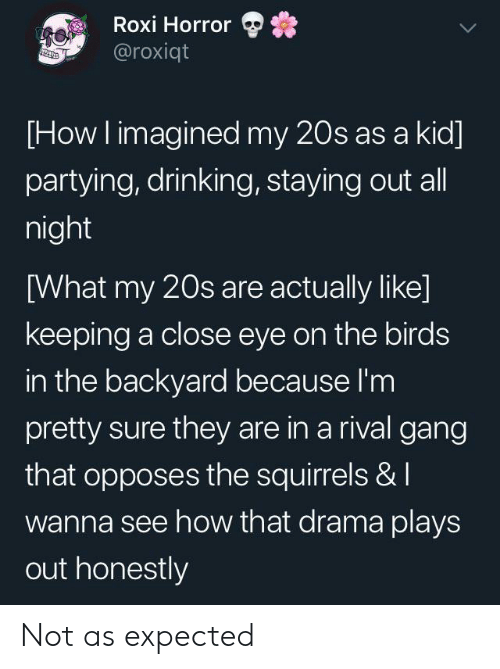 Drinking, Gang, and Birds: Roxi Horror  @roxiqt  [How I imagined my 20s as a kid  partying, drinking, staying out all  night  [What my 20s are actually like]  keeping a close eye on the birds  in the backyard because I'm  pretty sure they are in a rival gang  that opposes the squirrels & I  wanna see how that drama plays  out honestly Not as expected