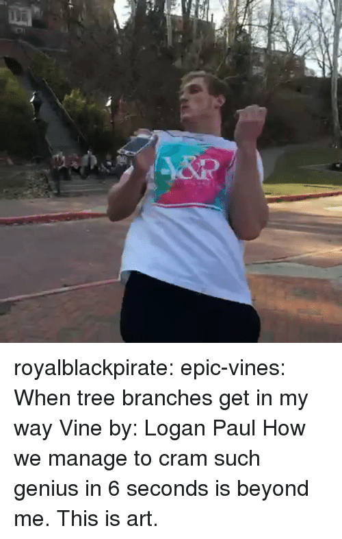 Tumblr, Vine, and Blog: royalblackpirate:  epic-vines:  When tree branches get in my way Vine by: Logan Paul  How we manage to cram such genius in 6 seconds is beyond me. This is art.