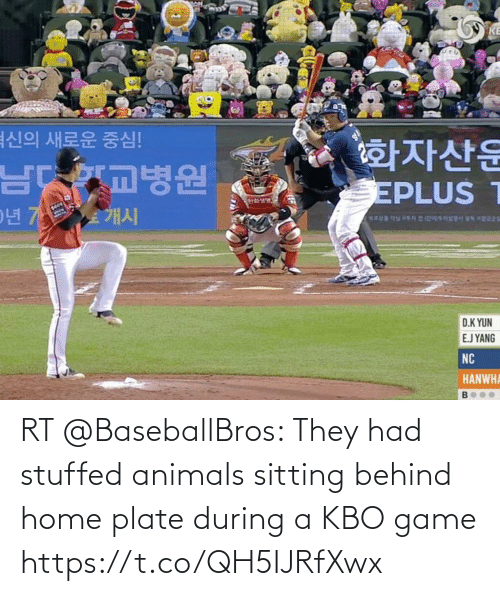 Animals: RT @BaseballBros: They had stuffed animals sitting behind home plate during a KBO game https://t.co/QH5IJRfXwx