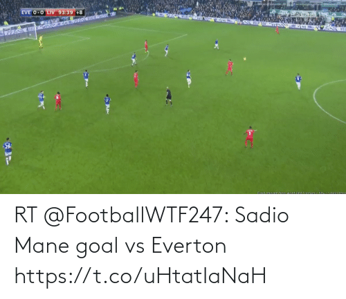 Goal: RT @FootballWTF247: Sadio Mane goal vs Everton   https://t.co/uHtatIaNaH