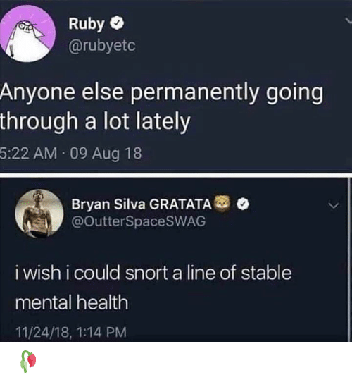 Memes, Bryan Silva, and 🤖: Ruby  @rubyetc  Anyone else permanently going  through a lot lately  5:22 AM 09 Aug 18  Bryan Silva GRATATA  @OutterSpacesWAG  i wish i could snort a line of stable  mental health  11/24/18, 1:14 PM 🥀