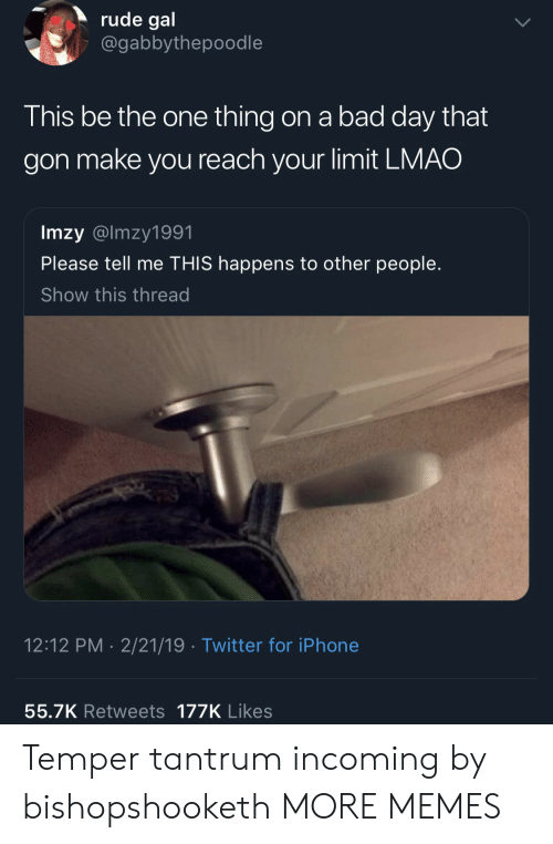 Incoming: rude gal  @gabbythepoodle  This be the one thing on a bad day that  gon make you reach your limit LMAO  Imzy @lmzy1991  Please tell me THIS happens to other people.  Show this thread  12:12 PM 2/21/19 Twitter for iPhone  55.7K Retweets 177K Likes Temper tantrum incoming by bishopshooketh MORE MEMES