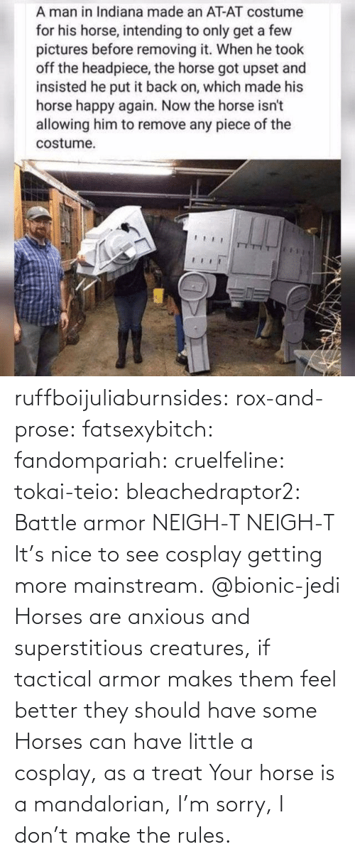 mainstream: ruffboijuliaburnsides:  rox-and-prose:  fatsexybitch:   fandompariah:  cruelfeline:  tokai-teio:  bleachedraptor2: Battle armor    NEIGH-T  NEIGH-T    It's nice to see cosplay getting more mainstream.    @bionic-jedi     Horses are anxious and superstitious creatures, if tactical armor makes them feel better they should have some    Horses can have little a cosplay, as a treat  Your horse is a mandalorian, I'm sorry, I don't make the rules.