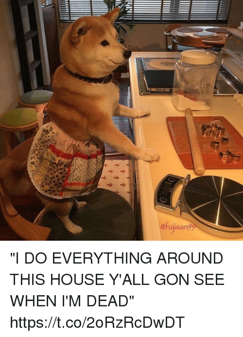 """House, Girl Memes, and Gon: @rujisan? """"I DO EVERYTHING AROUND THIS HOUSE Y'ALL GON SEE WHEN I'M DEAD"""" https://t.co/2oRzRcDwDT"""