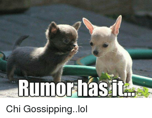 Memes, 🤖, and Chi: Rumor has it Chi Gossipping..lol