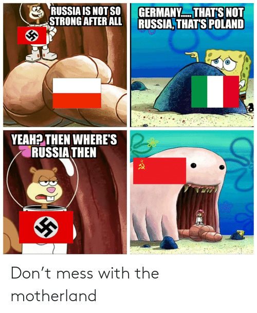 Poland: RUSSIA IS NOT SO  STRONG AFTER ALL  GERMANY. THAT'S NOT  RUSSIA, THAT'S POLAND  YEAH? THEN WHERE'S  RUSSIA THEN Don't mess with the motherland
