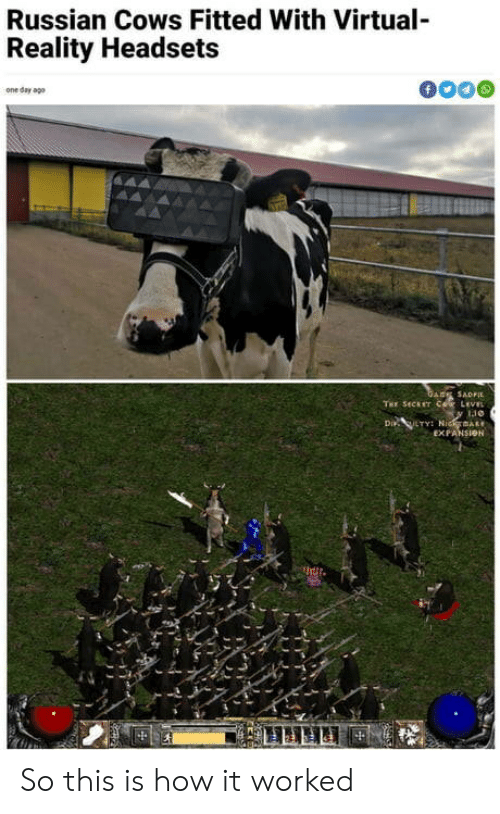 Fitted: Russian Cows Fitted With Virtual-  Reality Headsets  f  one day ago  GARE SADFI  THE SECET COR LEVEL  Di LTY NidmAR  EXPANSION So this is how it worked