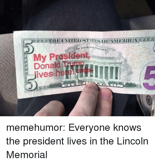 Tumblr, Blog, and Http: RUST  My Prasident  Donaild Trimn  Jives heeL memehumor:  Everyone knows the president lives in the Lincoln Memorial