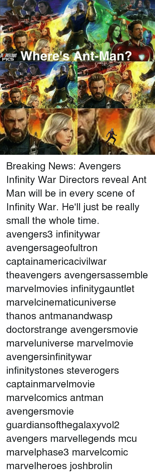 Memes, News, and Antman: RVELOUS  PICS  Where's Ant-Man? Breaking News: Avengers Infinity War Directors reveal Ant Man will be in every scene of Infinity War. He'll just be really small the whole time. avengers3 infinitywar avengersageofultron captainamericacivilwar theavengers avengersassemble marvelmovies infinitygauntlet marvelcinematicuniverse thanos antmanandwasp doctorstrange avengersmovie marveluniverse marvelmovie avengersinfinitywar infinitystones steverogers captainmarvelmovie marvelcomics antman avengersmovie guardiansofthegalaxyvol2 avengers marvellegends mcu marvelphase3 marvelcomic marvelheroes joshbrolin