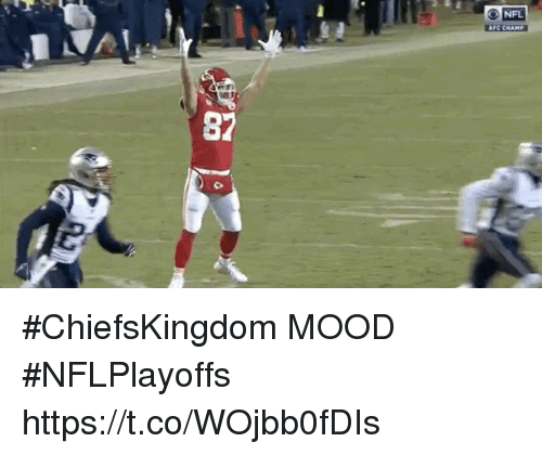 Memes, Mood, and Nfl: ry  NFL  AFC CHAMP  87 #ChiefsKingdom MOOD  #NFLPlayoffs https://t.co/WOjbb0fDIs