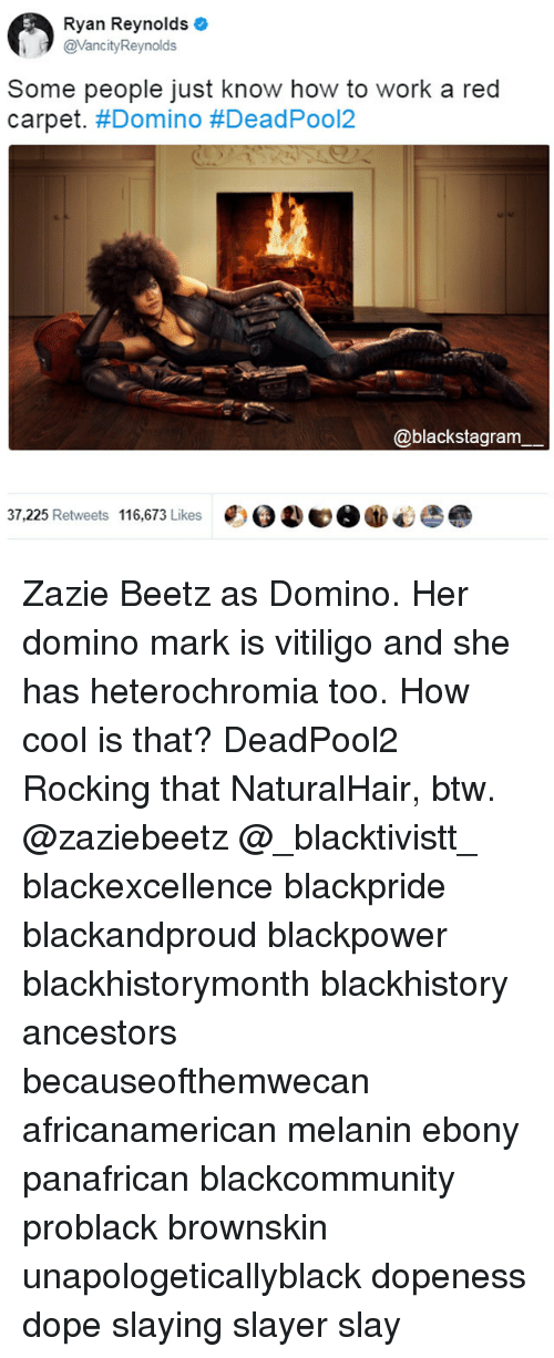 Blackhistory, Dope, and Memes: Ryan Reynolds O  @VancityReynolds  Some people just know how to work a red  carpet. #Domino #DeadPool2  @blackstagram  37,225 Retweets 116,673 Likes  鳘VO. Zazie Beetz as Domino. Her domino mark is vitiligo and she has heterochromia too. How cool is that? DeadPool2 Rocking that NaturalHair, btw. @zaziebeetz @_blacktivistt_ blackexcellence blackpride blackandproud blackpower blackhistorymonth blackhistory ancestors becauseofthemwecan africanamerican melanin ebony panafrican blackcommunity problack brownskin unapologeticallyblack dopeness dope slaying slayer slay