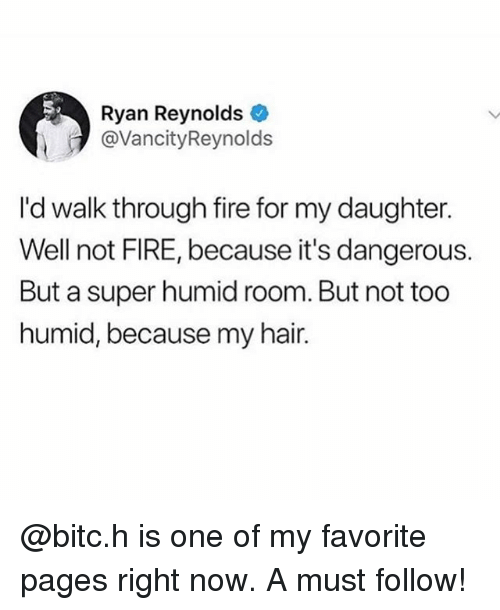 Fire, Funny, and Meme: Ryan Reynolds  @VancityReynolds  I'd walk through fire for my daughter.  Well not FIRE, because it's dangerous.  But a super humid room. But not too  humid, because my hair. @bitc.h is one of my favorite pages right now. A must follow!