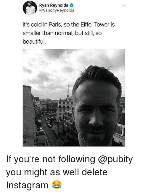 Eiffel Towered: Ryan Reynolds  @VancityReynolds  It's cold in Paris, so the Eiffel Tower is  smaller than normal, but still, so  beautiful. If you're not following @pubity you might as well delete Instagram 😂
