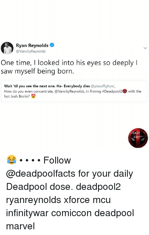 Memes, Saw, and Deadpool: Ryan Reynolds  @VancityReynolds  One time, I looked into his eyes so deeply l  saw myself being born.  Wait 'til you see the next one. Ha- Everybody dies @pissoffighost  How do you even concentrate, @VancityReynolds, in filming #Deadpool2. With the  hot Josh Brolin?  DEADROOL  FACT 😂 • • • • Follow @deadpoolfacts for your daily Deadpool dose. deadpool2 ryanreynolds xforce mcu infinitywar comiccon deadpool marvel