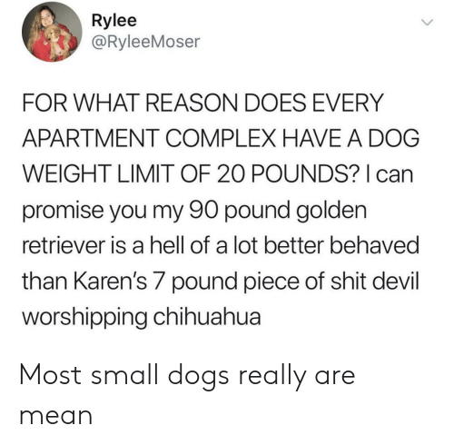 Hell Of A: Rylee  @RyleeMoser  FOR WHAT REASON DOES EVERY  APARTMENT COMPLEX HAVE A DOG  WEIGHT LIMIT OF 20 POUNDS? can  promise you my 90 pound golden  retriever is a hell of a lot better behaved  than Karen's 7 pound piece of shit devil  orshipping chihuahua Most small dogs really are mean