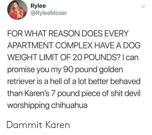 Hell Of A: Rylee  @RyleeMoser  FOR WHAT REASON DOES EVERY  APARTMENT COMPLEX HAVE A DOG  WEIGHT LIMIT OF 20 POUNDS? can  promise you my 90 pound golden  retriever is a hell of a lot better behaved  than Karen's 7 pound piece of shit devil  worshipping chihuahua Dammit Karen